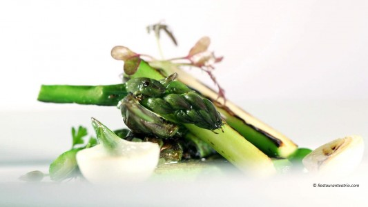 Gastronomic Hotels of Spain